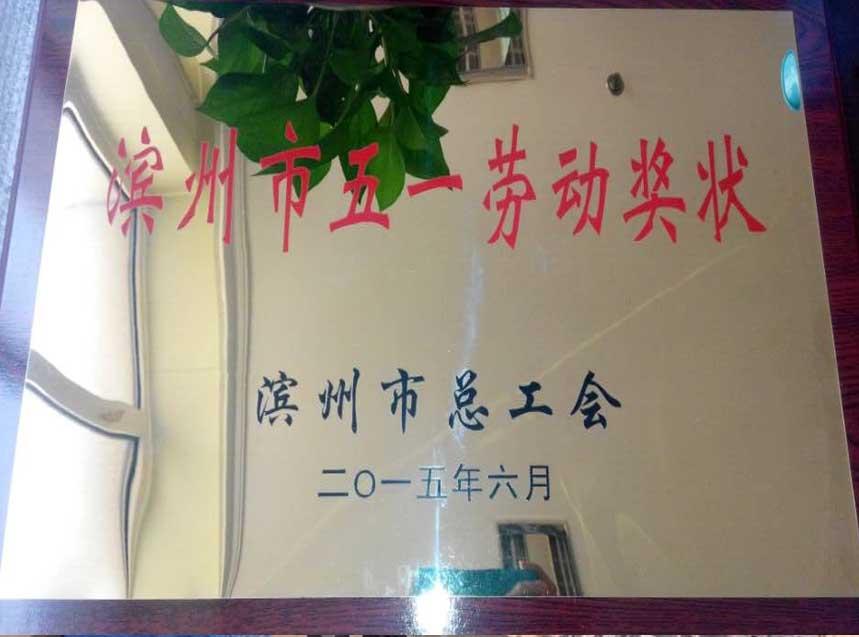 热烈祝贺我公司获得滨州市五一劳动奖状!